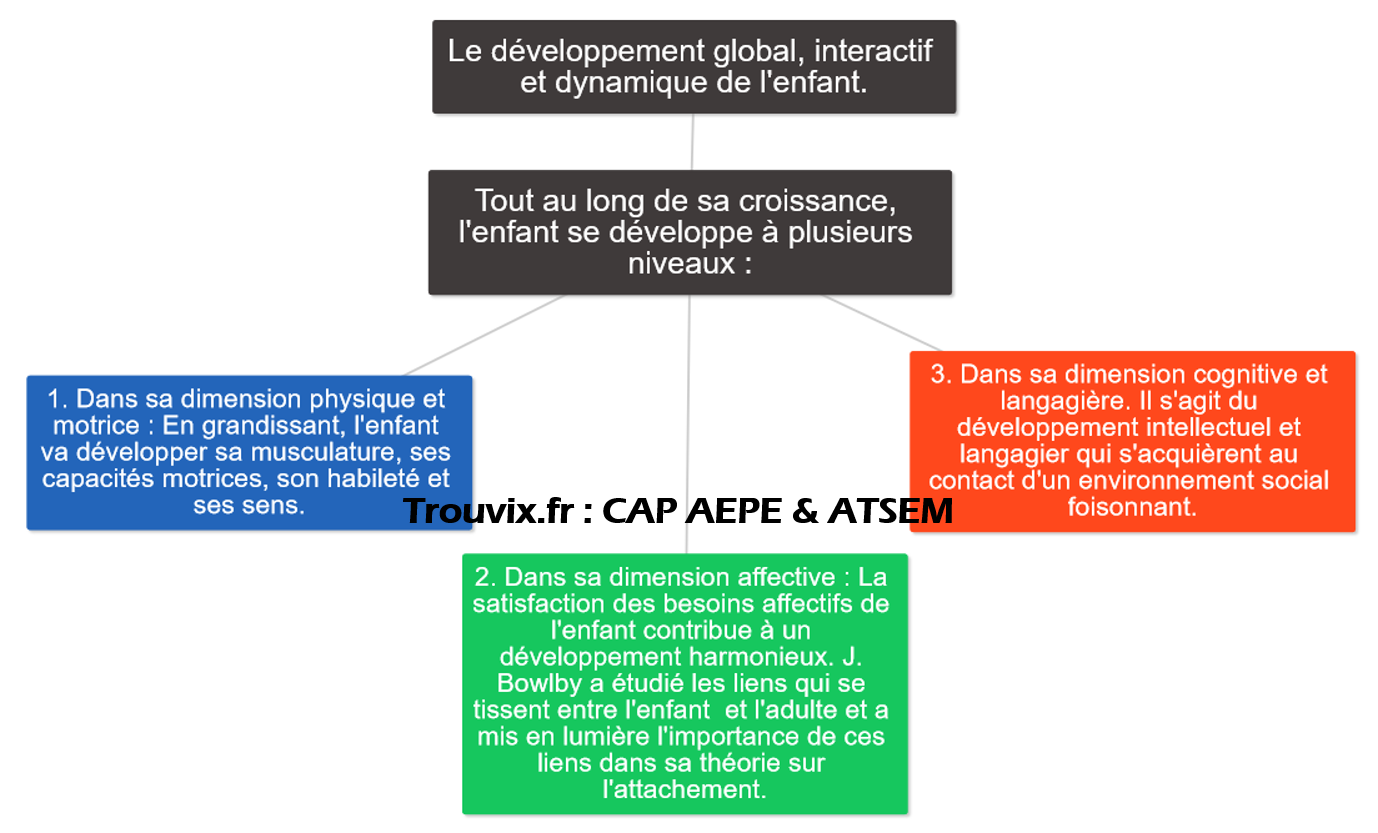 cap-petite-enfance-developpement-global-enfant