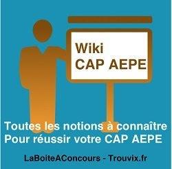 Dictionnaire définitions pour le CAP AEPE