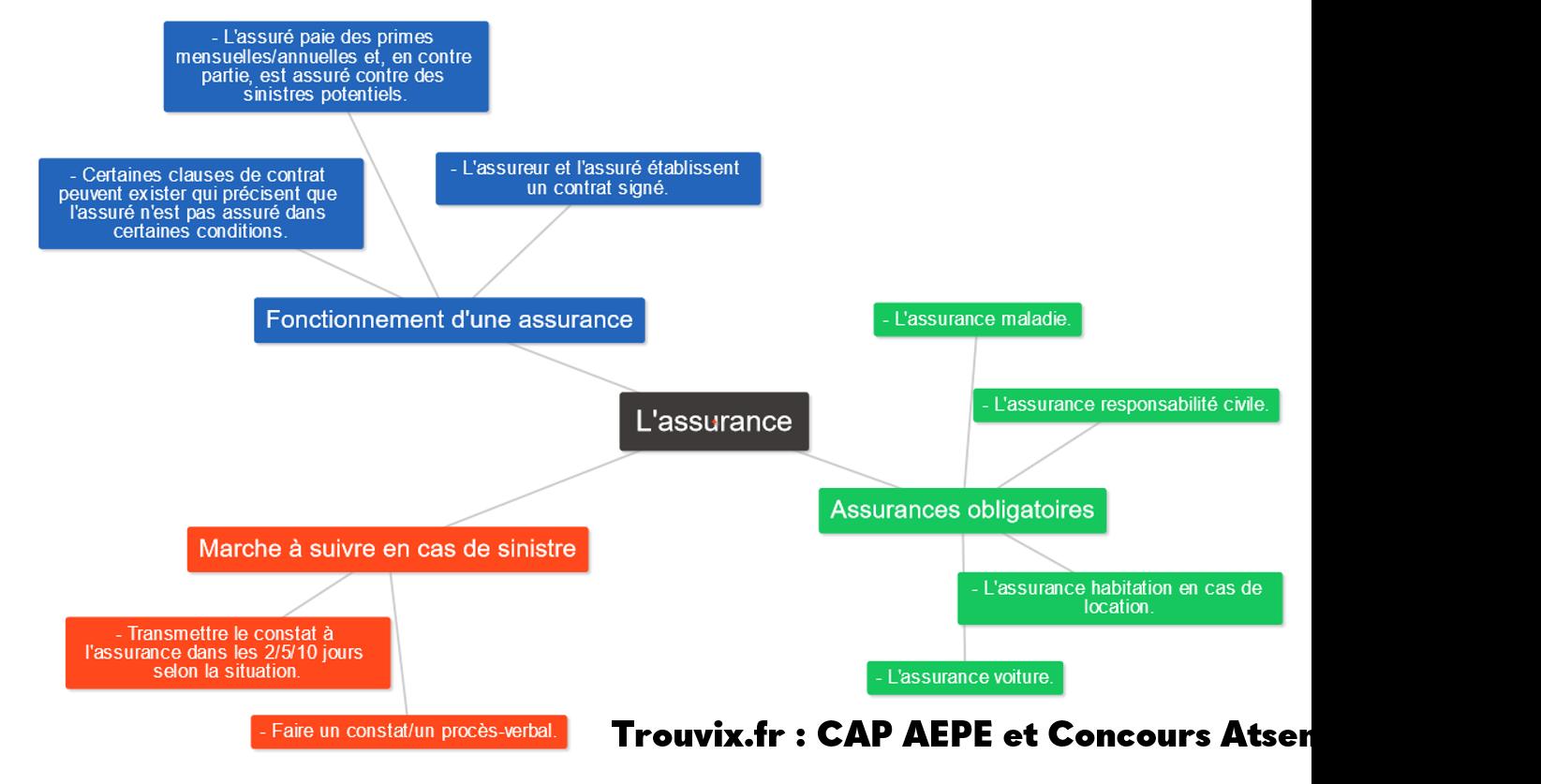 Cours PSE Assurance